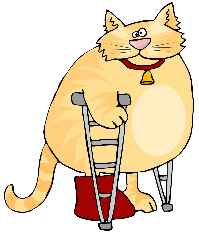 free clipart leg surgery - photo #39